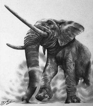 Panchatantra-moral-story-हाथी-का-आतंक
